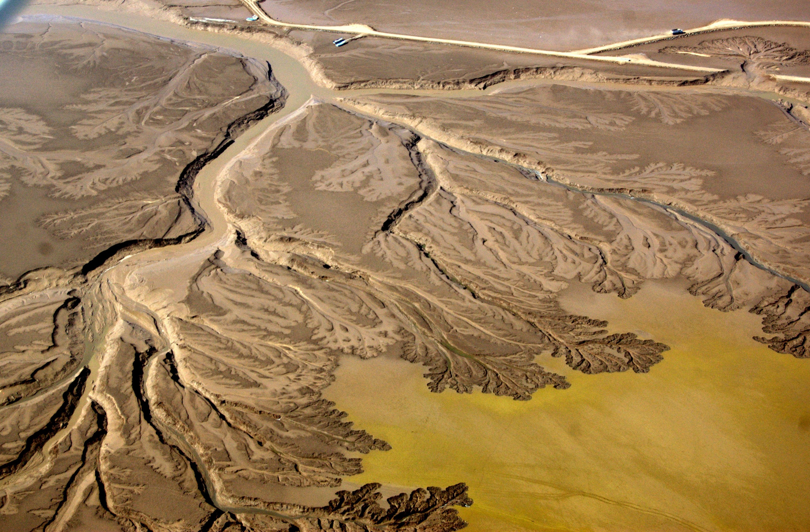 Rowene's Father Predicted the Colorado River Would Dry Up. He was Right.