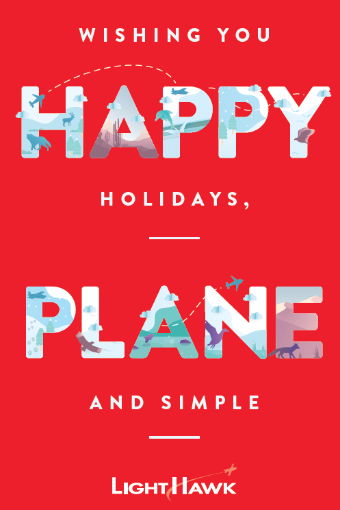 Happy Holidays Plane and Simple